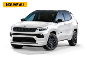 jeep_compass-ice